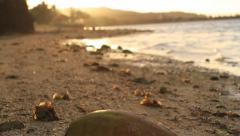 Stock Video Footage of Beach on GUAM, USA- CIRCA February, 2011
