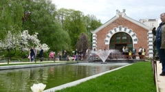 New spring season in MSU botanical garden.  Stock Footage