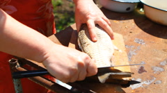 Woman cleans the fresh fish, close-up Stock Footage