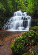 tropical waterfall in Deep forest with flower - stock photo
