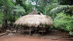 Laos people a thatch roofing from vetiver leaves Stock Footage