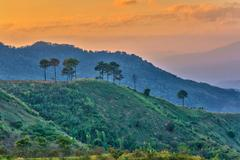 Misty sunset at Doi Angkhang mountain, Chiang mai, Thailand Stock Photos