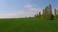Flying over a green grass field Stock Footage