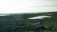 Single Road in the Western Fjords of ICELAND Stock Footage