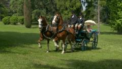Horse driving trials. Stock Footage