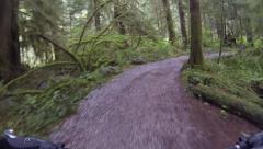 POV mountain biking on trails Stock Footage