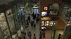 Smithsonian Natural History Museum education mammals 4K 081 Stock Footage