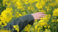 Hand of Female Farmer in Oilseed Rapeseed Field Stock Footage
