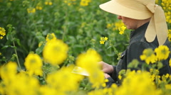 Female Farmer with Digital Tablet in Oilseed Rapeseed Cultivated Field - stock footage