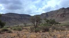 Namibian Savannah Stock Footage