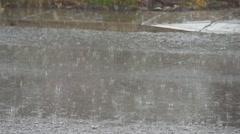 Raindrops striking road Stock Footage
