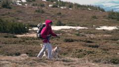 hiker trekking with his husky companion slow motion - stock footage
