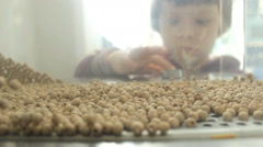 Little Girl Turn on Wooden Seeds Fly in the machine Stock Footage