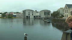 Small Pond in Urban ICELAND Stock Footage