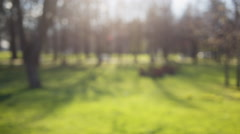 blurred bokeh background in city park spring time, 50mm lens prores hq footage - stock footage