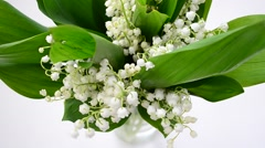 Lilies of the valley in a vase Stock Footage