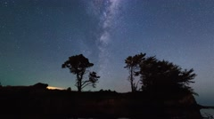 Row of trees silhouetted against rotating Milky Way Galaxy, Timelapse Zoom Out Stock Footage