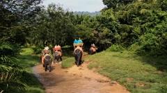 Elephant riding Stock Footage
