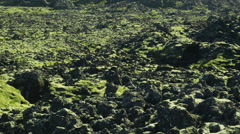 Scenic Landscape of Black Stones in ICELAND Stock Footage