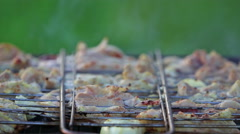 Chicken on the grill Stock Footage