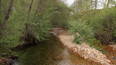 River Between Vegetation Spring - stock footage