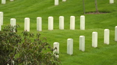 Headstones at Arlington National Cemetery 01 Stock Footage