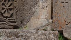Lizard on the stones of the old monasteries. Stock Footage