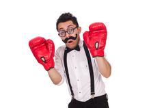 Funny boxer isolated on the white background Stock Photos