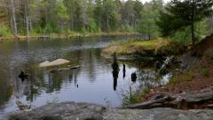 Nature Reveal Pond in Maine - stock footage