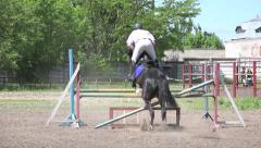 Horse racing, dressage horse and rider. Competitions of equestrian sport - stock footage