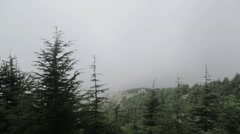 Cedars Of Lebanon In The Middle East With Fog Stock Footage