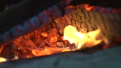 Fireplace. Fire. Bonfire burning at night - stock footage