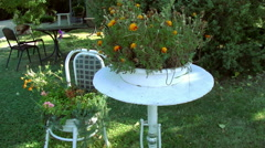 A table and a chair with flowers in the garden Stock Footage