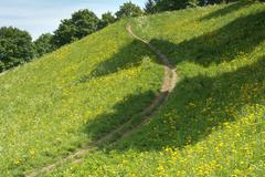 Stock Photo of Springtime Meadow with Trail