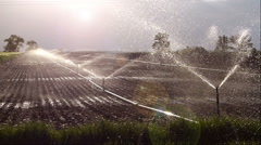 Field irrigation Stock Footage