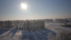 Trees with snow in winter rural park Stock Footage