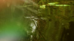 Russian nature. Summer. Vegetation on the lake, water glare. Stock Footage