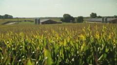 American Farmland With Blue Sky Stock Footage