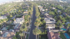 Aerial Shot of Beverly Hills Palm Trees - stock footage