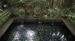 Water hindu temple at sacred monkey forest. Ubud, Bali, Indonesia Stock Footage