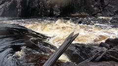 Gordon River rapid Stock Footage