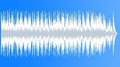 Delta Blues Ukulele - traditional upbeat - stock music