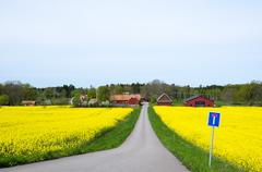 Swedish spring landscape Stock Photos