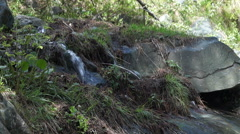 Water Flow in Natural enviroment Stock Footage