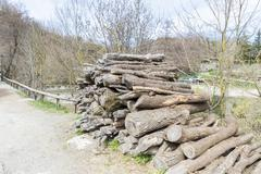 log pile - stock photo