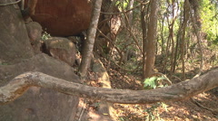 Forest at Kulen Hills in Angkor, Siem Reap, Cambodia Stock Footage
