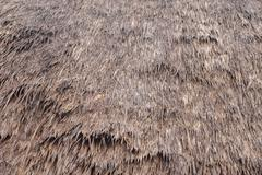 Thatch roof background Stock Photos