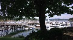 Port of Friday, shady park near docks Stock Footage