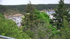 Yacht marina ,Port of Friday Stock Footage