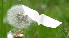 Paper airplane is flying around dandelion Stock Footage